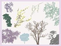Het vinden van bomen Stock Foto's