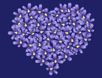 Het violette hart van de bloemenliefde Stock Foto