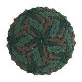 Het Virus van de knokkelkoorts (DENV) Royalty-vrije Stock Afbeeldingen