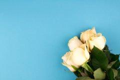 Het vlakke boeket van beige rozen op blauwe achtergrond, legt, hoogste mening, exemplaarruimte De dag van moeders Rood nam toe Stock Afbeelding