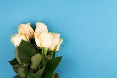 Het vlakke boeket van beige rozen op blauwe achtergrond, legt, hoogste mening, exemplaarruimte De dag van moeders Rood nam toe Stock Foto