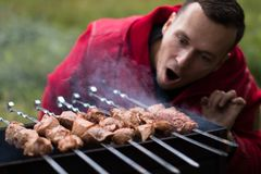 Het vlees is gebraden op de grill Royalty-vrije Stock Afbeelding