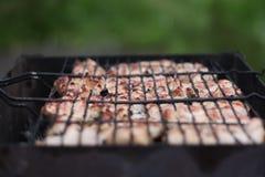 Het vlees op de grill royalty-vrije stock afbeelding