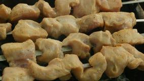 Het vlees op vleespennen wordt geroosterd op steenkolen stock videobeelden
