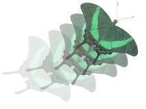 Het vliegen Stock Foto