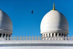 Het vliegen aan de vrede stock afbeelding