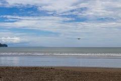 Het vliegen aan het strand Royalty-vrije Stock Foto