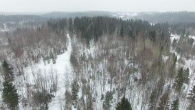 Het vliegen boven het de winter boslandschap in bewolkt weer met een sneeuwval stock footage