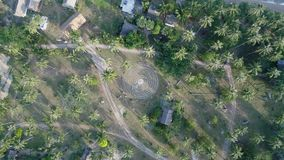 Het vliegen boven mooie weelderige groene wildernis met palmen stock videobeelden