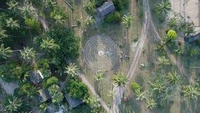 Het vliegen boven mooie weelderige groene wildernis met palmen stock video