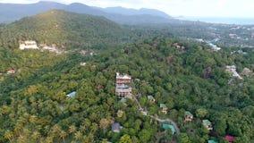 Het vliegen boven mooie weelderige groene wildernis met palmen stock footage