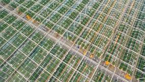 Het vliegen boven serres met groenten stock footage