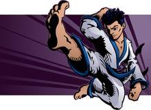 Het vliegen de Schop van de Karate Stock Foto