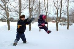 Het vliegen door de Sneeuw Stock Afbeeldingen