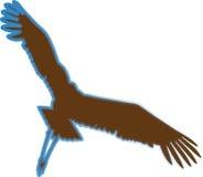 Het vliegen Eagle Royalty-vrije Stock Foto's