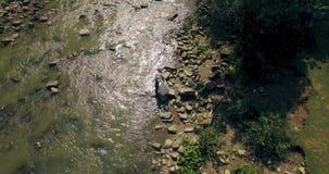 Het vliegen laag boven de rivier die zijn manier snijden door de de lentevallei 4K stock video
