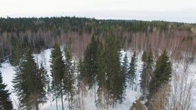Het vliegen laag over snow-covered bevroren meer naar de winterbos stock video