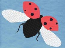 Het vliegen lieveheersbeestjetoepassing Stock Foto's