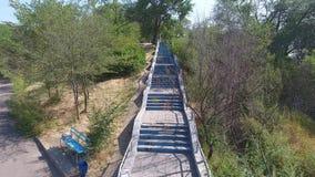 Het vliegen omhoog boven de stappen in het park tussen de bomen stock footage