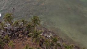 Het vliegen op een hommel over de oceaan stock videobeelden
