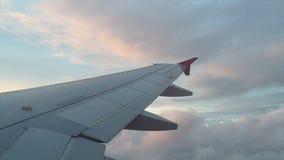 Het vliegen over avondhemel stock videobeelden