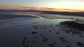 Het vliegen over de oceaan in de zonsondergang stock videobeelden