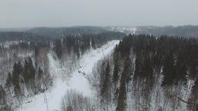 Het vliegen over het de winter boslandschap in bewolkt weer met een sneeuwval stock videobeelden