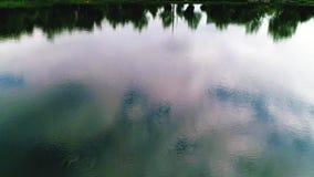 het vliegen over een meer Sluit omhoog De bomen worden weerspiegeld in water stock video