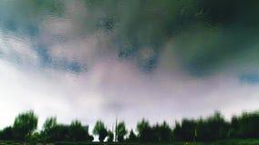 het vliegen over een meer Sluit omhoog De bomen worden weerspiegeld in water Omgekeerd beeld stock video