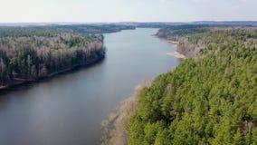 Het vliegen over een mooie brede rivier en groen met grijs bos op een de lentedag stock video
