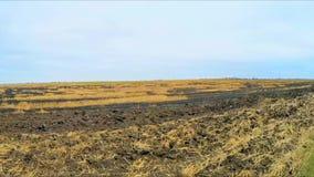 Het vliegen over Gebrand Landbouwgebied in Rusland stock video