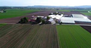 Het vliegen over grote serres Bloem het groeien aanplanting, grote serres, serres onder Europese gebieden stock videobeelden