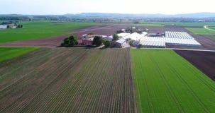 Het vliegen over grote serres Bloem het groeien aanplanting, grote serres, serres onder Europese gebieden stock footage