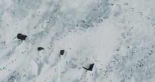 Het vliegen over Meer Bevroren meer dat met een dikke laag van ijs en sneeuw wordt behandeld Sporen van dieren stock videobeelden