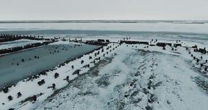 Het vliegen over Meer Bevroren meer dat met een dikke laag van ijs en sneeuw wordt behandeld Sporen van dieren stock video