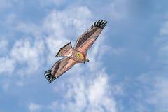 Het vliegen van de vlieger Royalty-vrije Stock Afbeeldingen