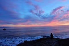Het vliegen van een Hommel bij Zonsondergang stock foto's