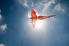 Het vliegen van Firebird Royalty-vrije Stock Afbeeldingen
