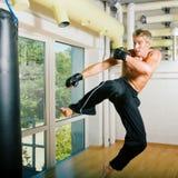 Het Vliegen van vechtsporten Stock Fotografie
