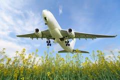 Het vliegtuig stijgt over de weide op Royalty-vrije Stock Foto's