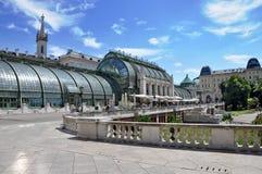 Het vlinderhuis Wenen, Oostenrijk Royalty-vrije Stock Foto's