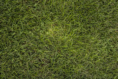 Het vloeroppervlak van groene †‹â€ ‹kookt Royalty-vrije Stock Afbeelding