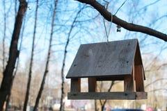 Het voeden van trog voor vogels op een boom Royalty-vrije Stock Foto