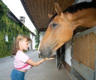 Het voedende paard van het meisje Royalty-vrije Stock Foto