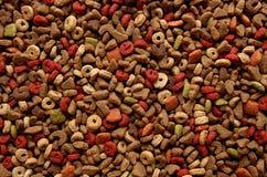 Het voedsel van de kat Royalty-vrije Stock Foto