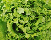 Het voedsel van Healty royalty-vrije stock afbeeldingen