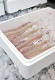 Het voedsel van vissen in doos Stock Foto