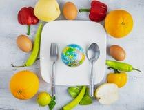 Het voedselconcept van de ideewereld stock fotografie