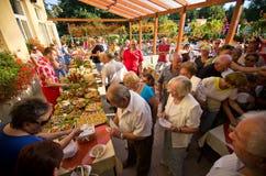 Het voedselfestival van het de zomerhotel Stock Foto