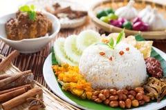 Het voedselnasi van Maleisië lemak Stock Afbeelding